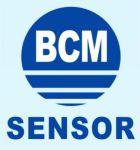 BCM Logo-2